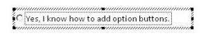 edit option text box